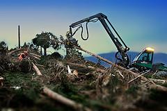 foto von flickr.com, user sauerlandthemen, creative commons