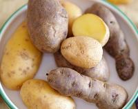 Verschiedene Kartoffelsorten aus Österreich, © agrarfoto.com