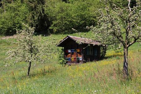 """""""Emmental - Bienenhaus"""" von Massimo Mercuriali"""